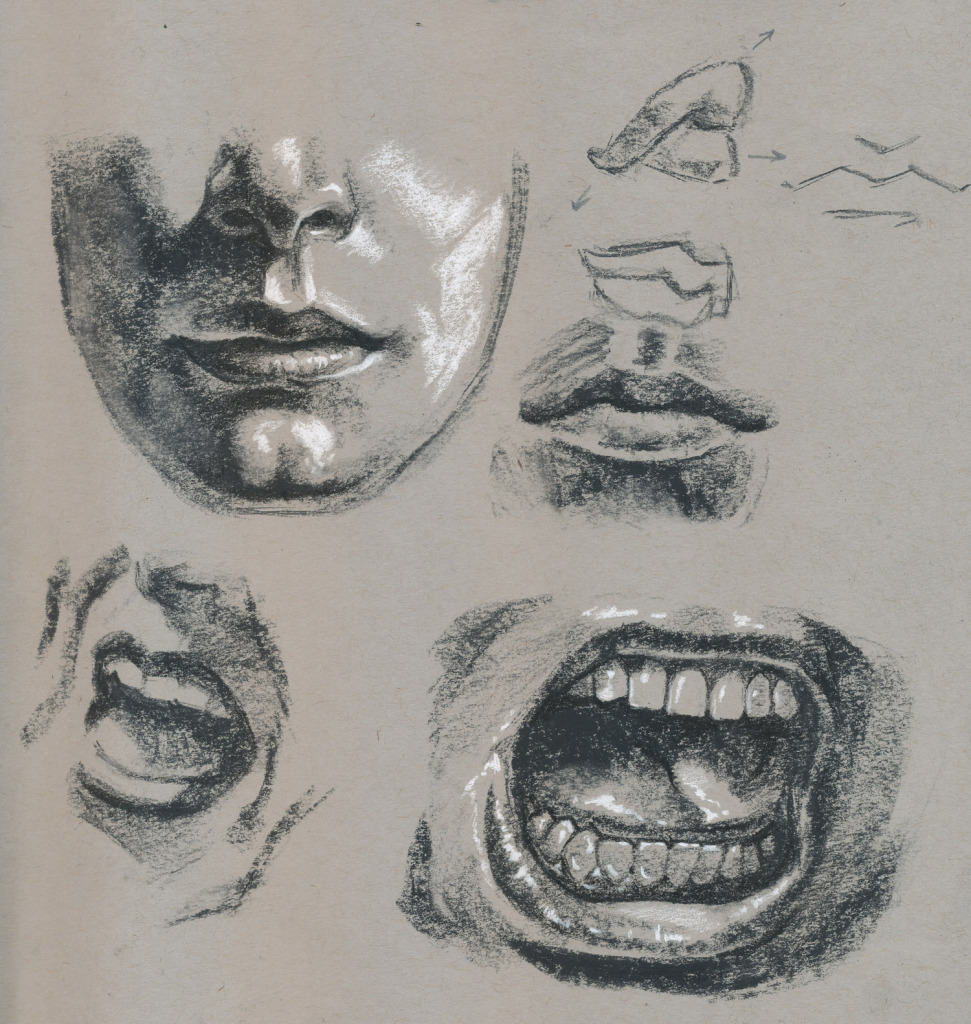 mouthstudy